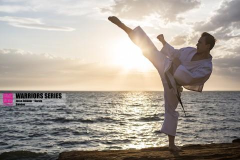 warriors series jesse enkamp karate nerd