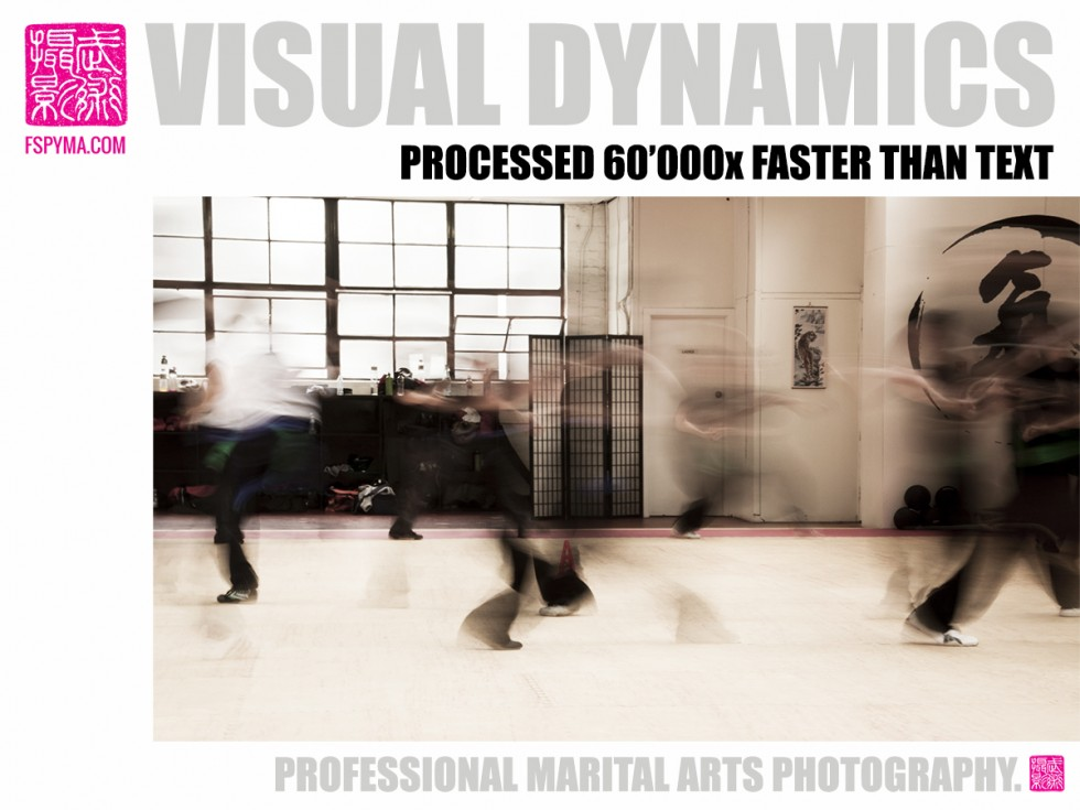 VISUAL DYNAMICS 2 * *  A PICTURE SAYS MORE THAN 60'000 WORDS