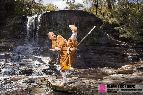 warriors series shi de yang shaolin kung fu